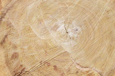 Texturizar la madera