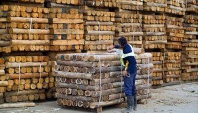 venta de madera