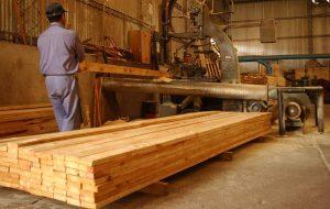 Origen de la madera