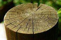 Propiedades química de la madera