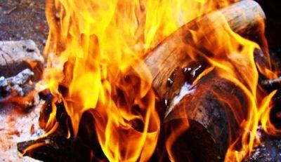 Propiedad química de la madera